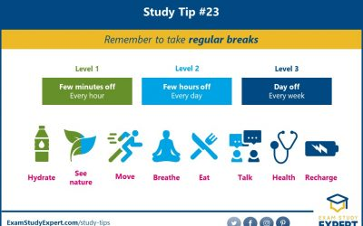 51 PROVEN Study Tips For Students (That Work Like A Charm In 2021)